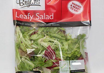 Salad Small bg